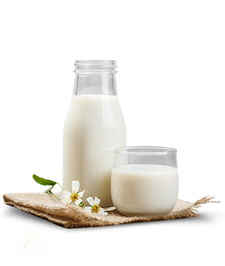 kastamonu organik süt